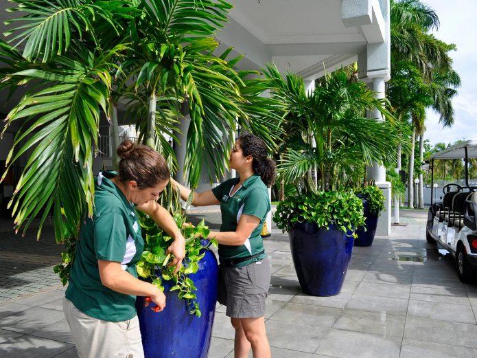 professional gardeners