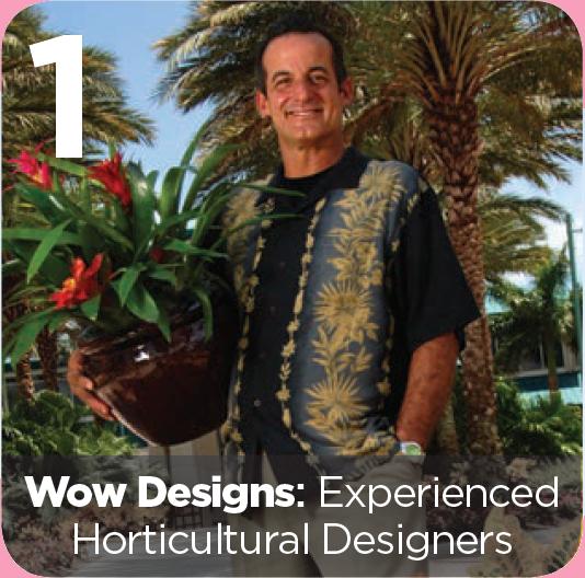 WOW Designs