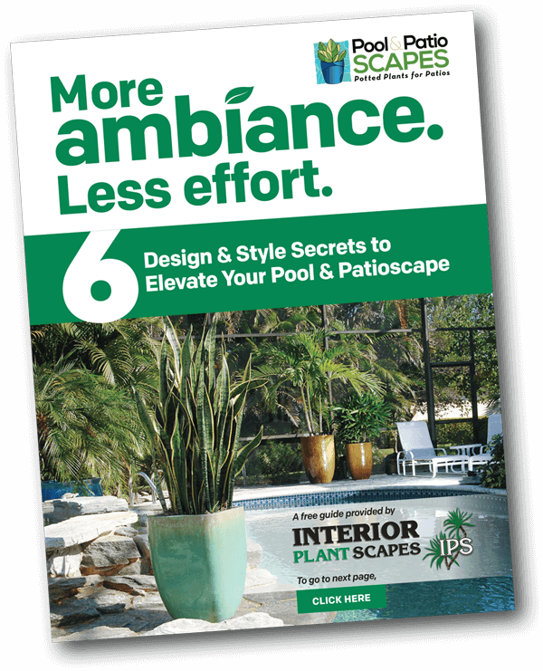 Front of a guide that has an image of plants around a pool