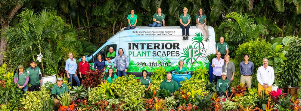 All of the Interior Plant Scapes' team member posing around and on the IPS van