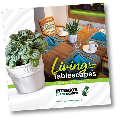 Front of a guide that has an image of a tablescape